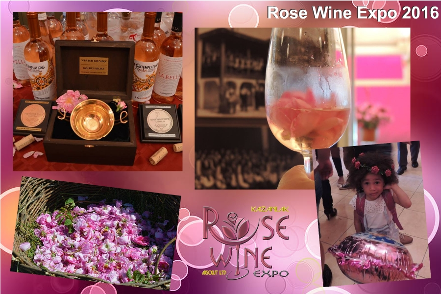 backgraund_rose_wine_expo_2016