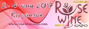 Banner RoseWineExpo2017-300x100
